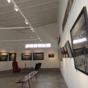 Shalini Ganendra Fine Art (4)