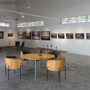 Shalini Ganendra Fine Art (5)